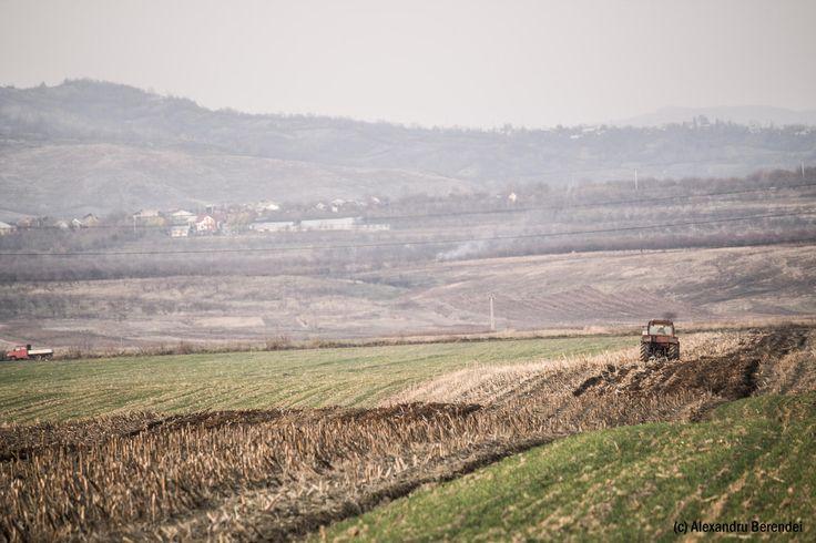 working land