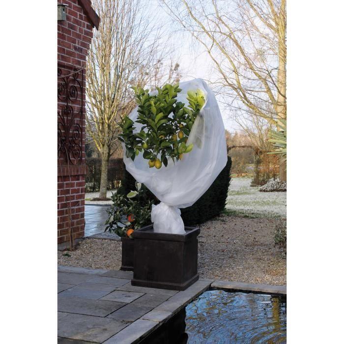 Nature Voile D Hivernage 30 G M 2 X 10 M Blanc Dechets De Jardin Toile De Paillage Et Nature