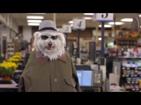 Doritos Dogs - Crash the Super Bowl 2016 WINNER OFFICIAL - YouTube