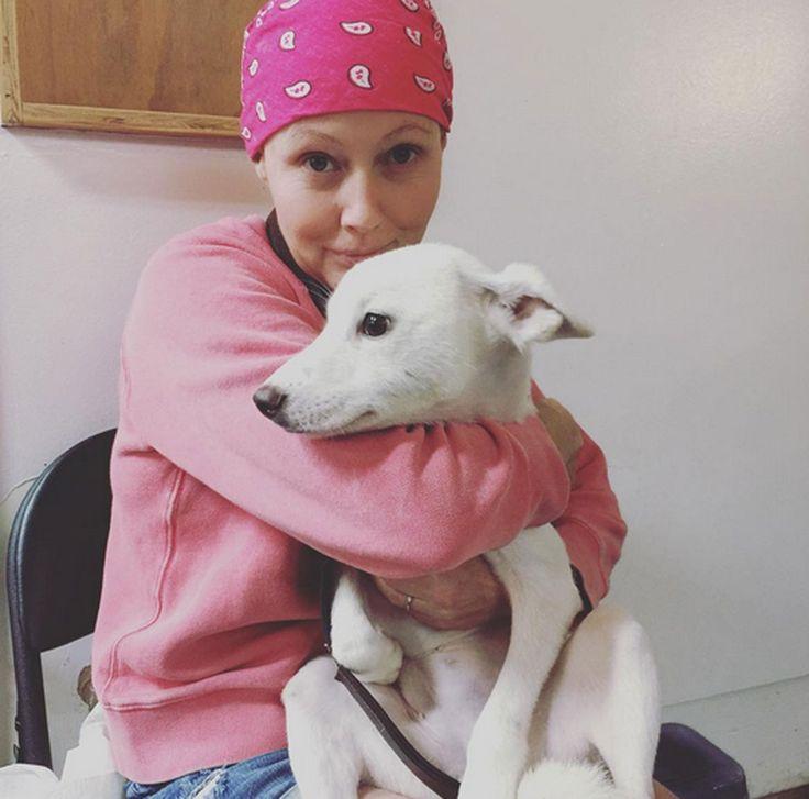 20 juillet : Shannen Doherty partager les photos de son combat contre le cancer