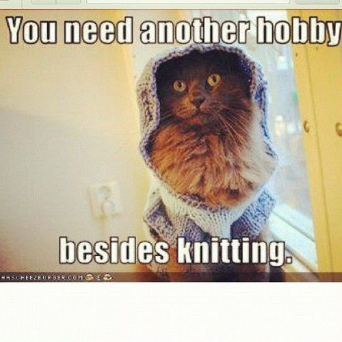 Knitting Birthday Meme : Best knitting crochet humor images on pinterest