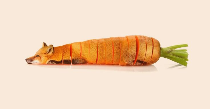 These strange animals are crossed with delicious and healthy fruits and vegetables.
