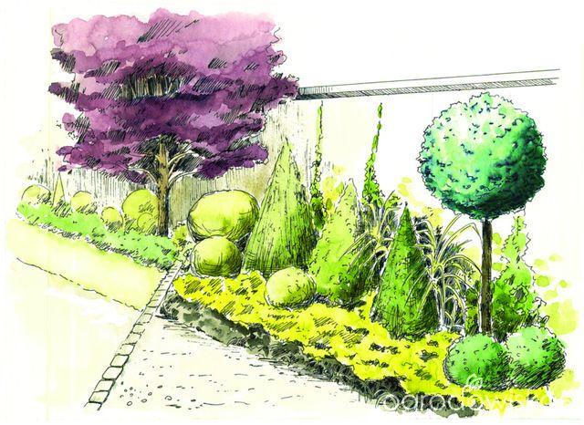 Ogród nie tylko bukszpanowy - część I - strona 329 - Forum ogrodnicze - Ogrodowisko