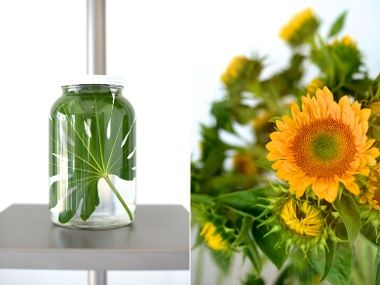Spruce Opens | Los Angeles - DailyCandy  Love the leaf in a jar. So clean and clear.