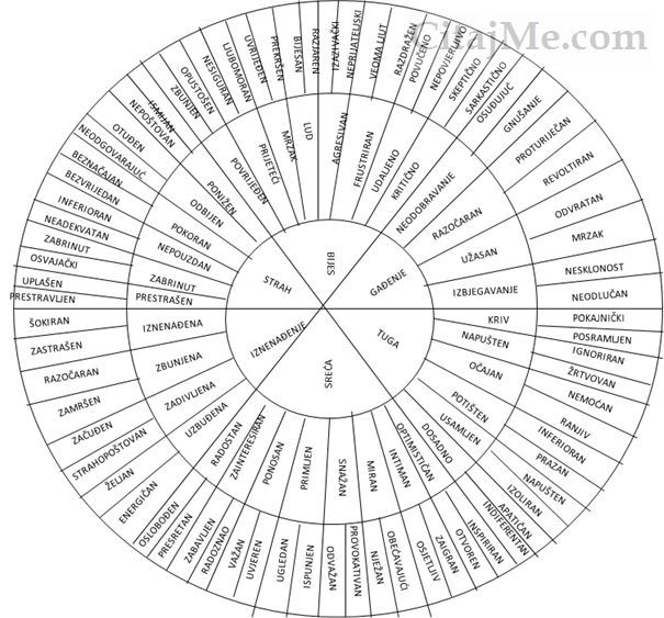 kaitlin robbs emotion wheel pdf