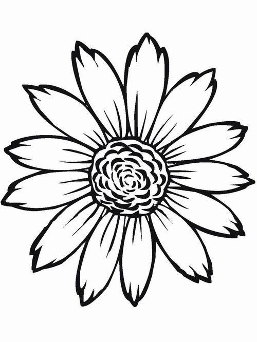 דפי צביעה להדפסה פרחים 1 Colorful Pictures