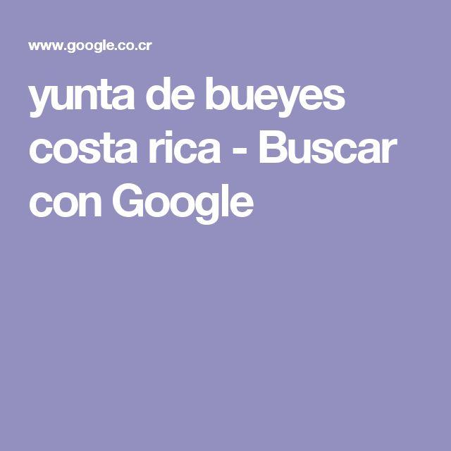 yunta de bueyes costa rica - Buscar con Google