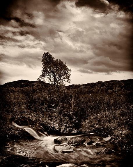 'Hardangervidda' by studio-toffa on artflakes.com as poster or art print $18.03
