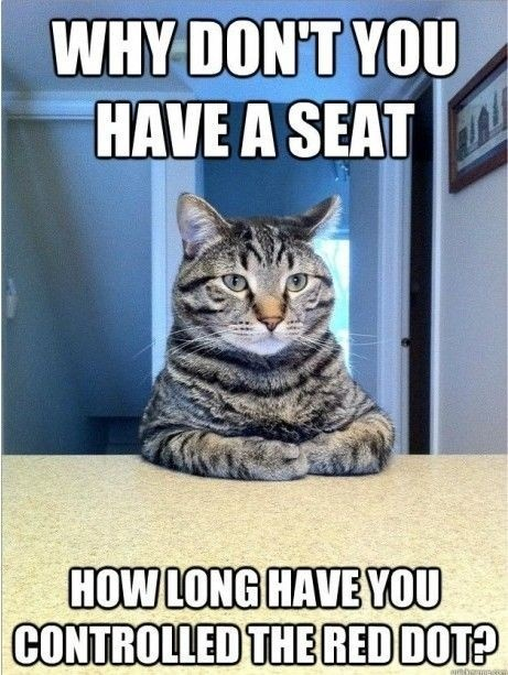 How long??: Dust Jackets, Dust Wrappers, Funny Cat, Pet, Funny Stuff, Funny Animal, So Funny, Cat Meme, Book Jackets