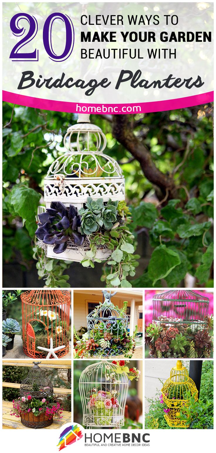 Birdcage+Planter+Design+Ideas