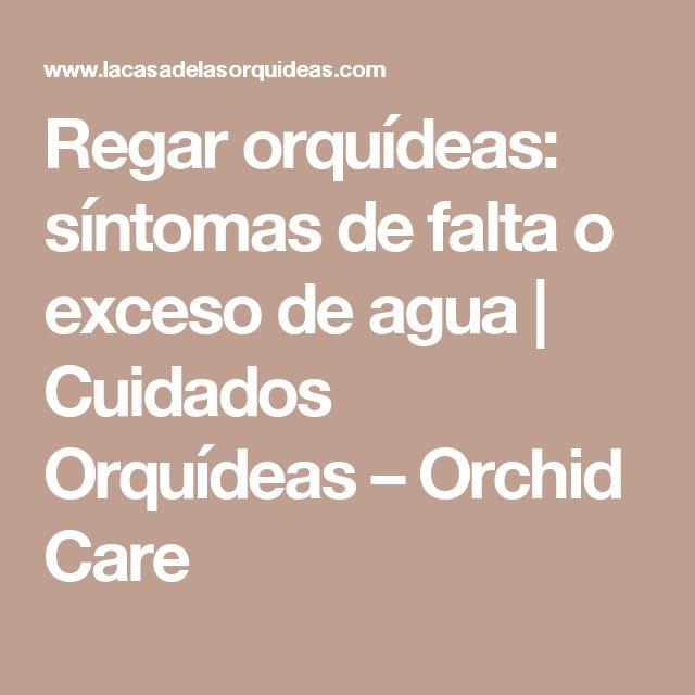 Regar orquídeas: síntomas de falta o exceso de agua   Cuidados Orquídeas – Orchid Care