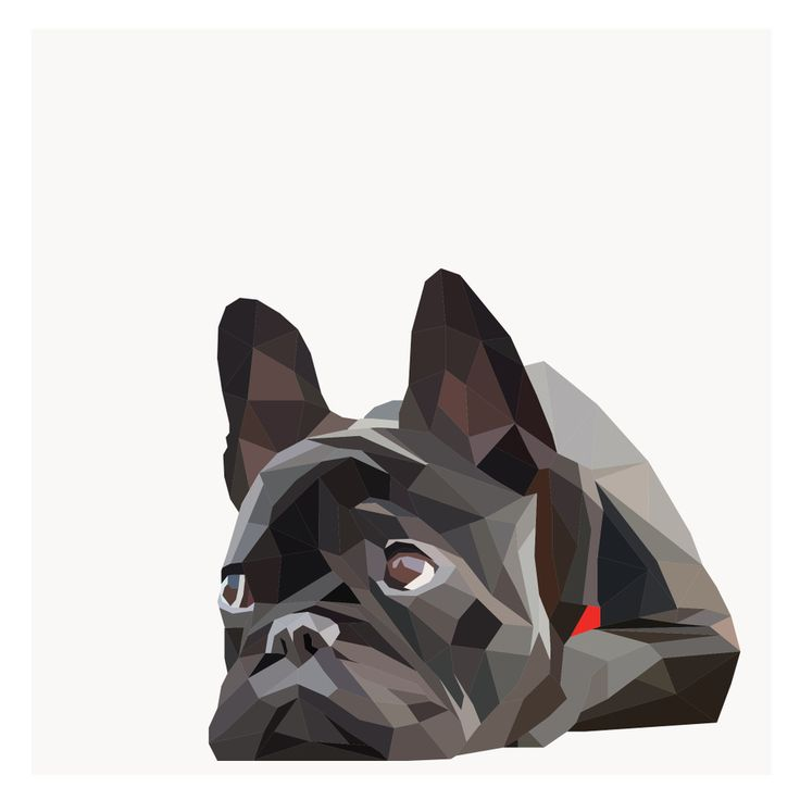 Bulldog painting by the Geometric Collective~Image of FRENCHIE