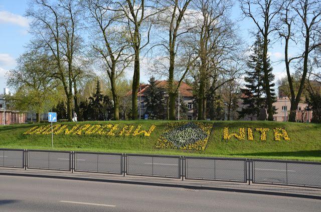 Kroniki Inowrocławskie: Inowrocław wita gości kwiatami