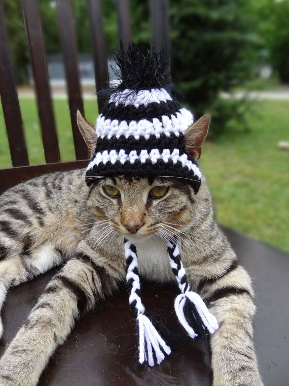 Cat Hat Cat Costume Pets  The Zebra Cat's Hat  by iheartneedlework, $14.00