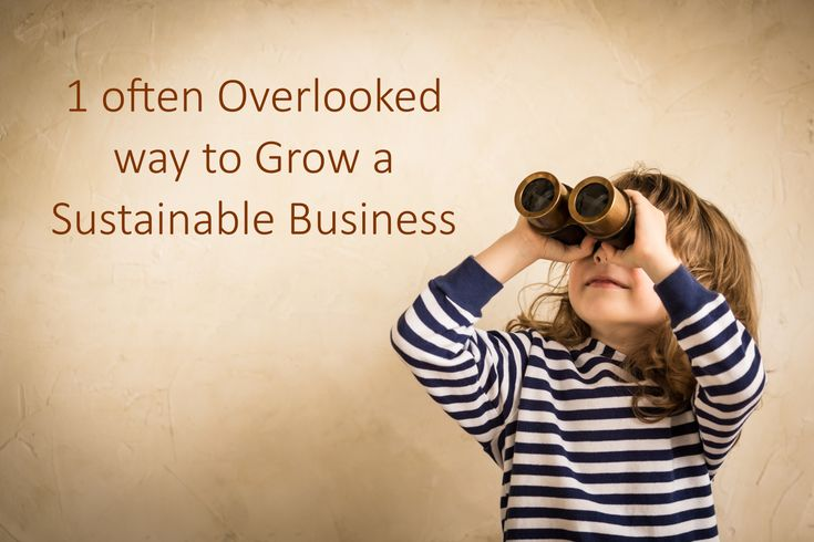 http://www.raultiru.com/grow-sustainable-business  How to Grow a Sustainable Business  #GrowthHacking #DigitalMarketing #Blogging #Business