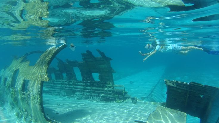 Norman's Cay 🇧🇸 Bahamas   Snorkeling adventures
