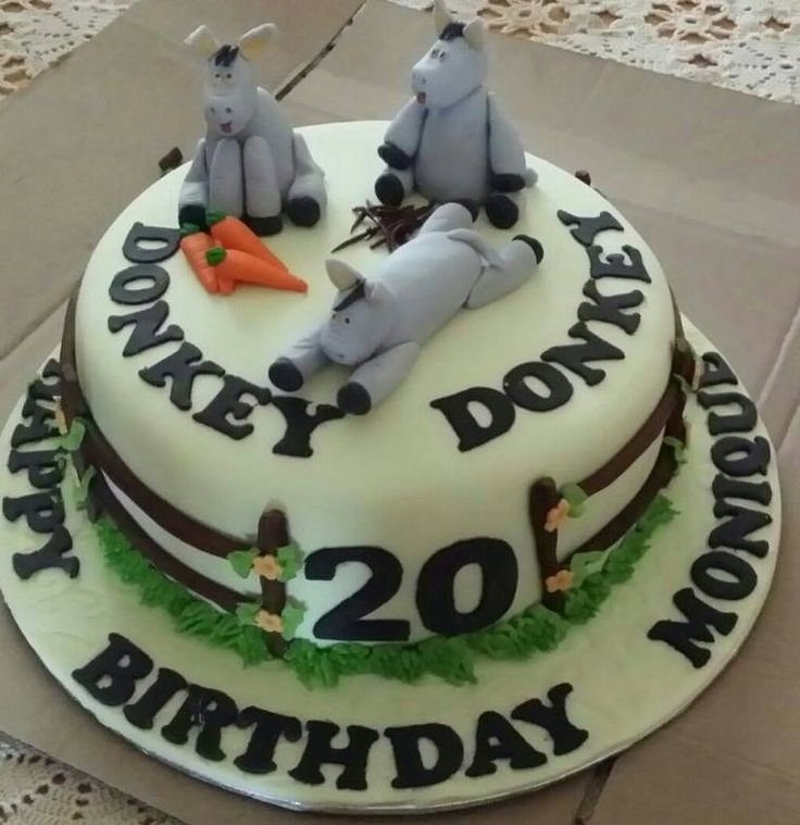 Single tier, donkey themed, birthday cake made by Altefyn Cakes