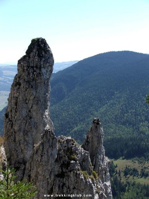 Hasmasul Negru peak - #Hasmas_mountains #Transylvania