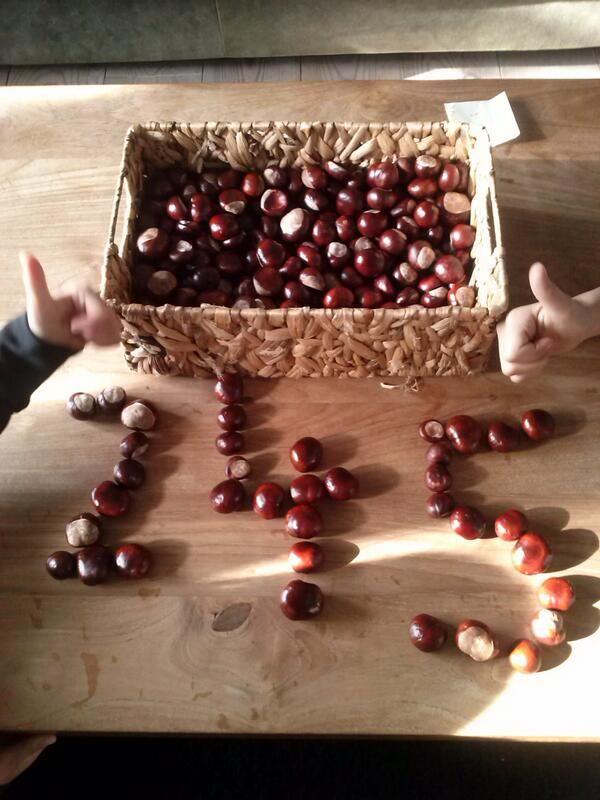Thema Herfst; Maak van kastanjes verschillende cijfers (na)