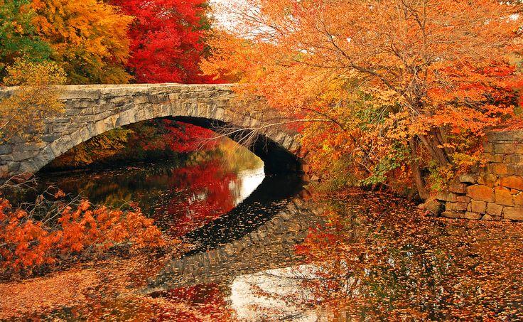 Beautiful Bridge!