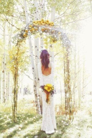 Romantic photo ma1-12.gif