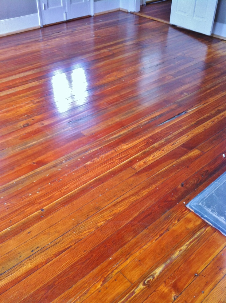 100 year old pine floors after they've been re-sanded and finished with 3 coats of polyurethane.