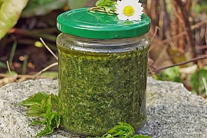 knoblauchsrauke - Pesto