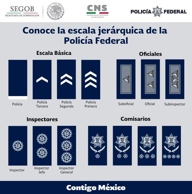 Rangos en la Policía Federal de México