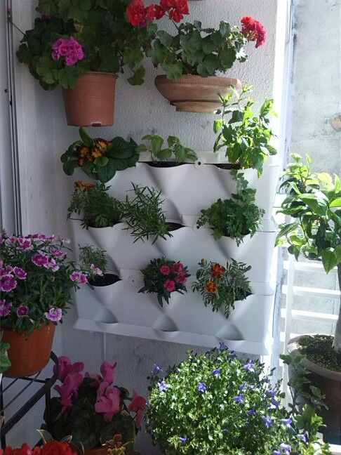 33 best jard n vertical minigarden images on pinterest vertical gardens plants and green walls - Vertical gardens miniature oases ...