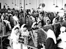 mulheres a trabalhar nas fabricas de conserva em olhão
