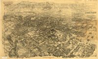 """can get 45"""" x 29"""" Old map of Pasadena, California, 1903- multiple sizes"""