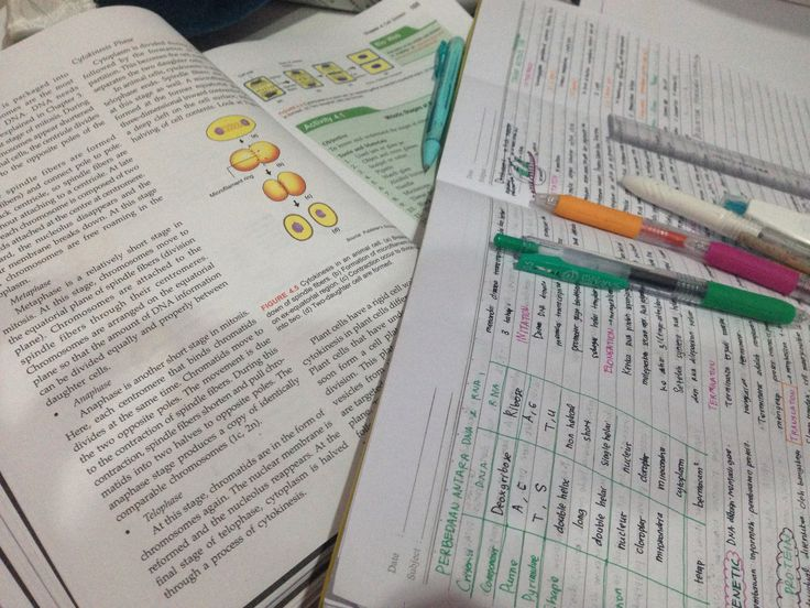 Study hard, play hard #books