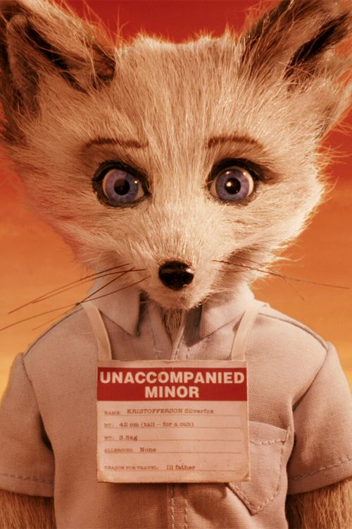 Eric Chase Anderson as Kristofferson Silverfox in Fantastic Mr. Fox.
