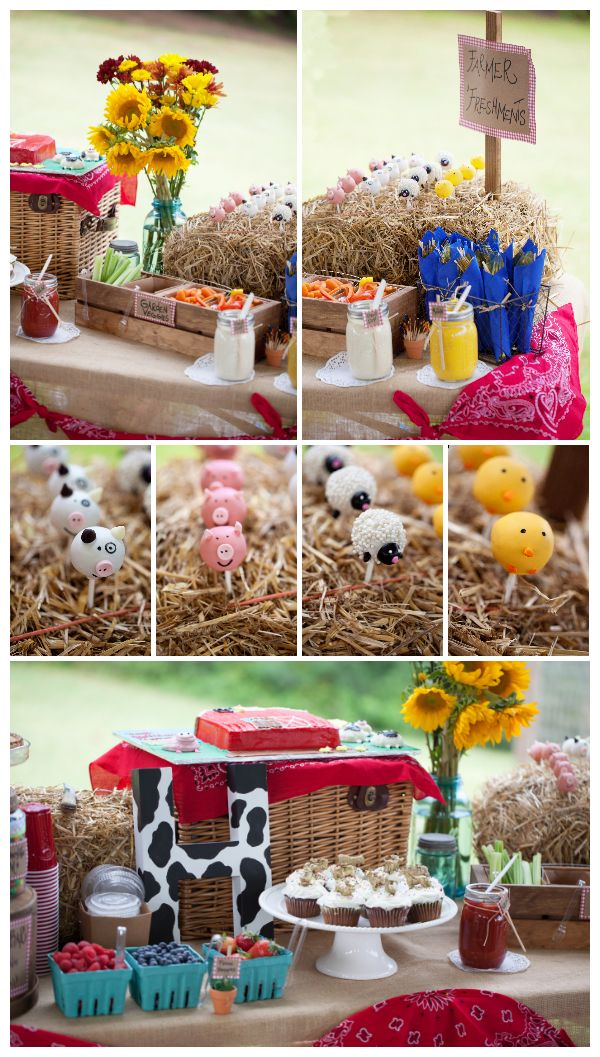 Barn Party. Farm Party. Birthday Party ideas. Animal Cake Pops. Fabulous with the sunflowers...