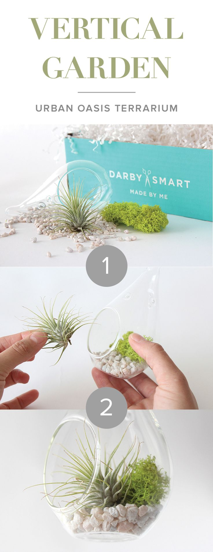 DIY Air Plant Terrarium Project | Get The Supplies