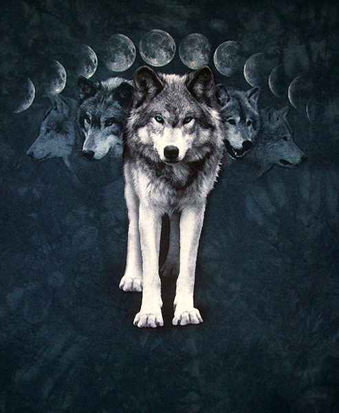 Wolf Moon | Gypsy Magic: Symbolism of the Full Wolf Moon