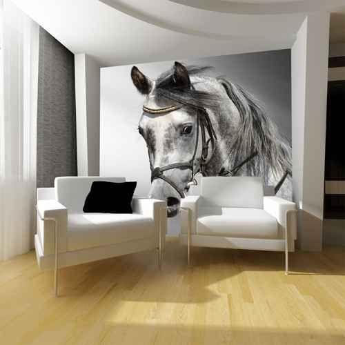 Las 25 mejores ideas sobre caballos razas en pinterest for Murales en 3d para salas