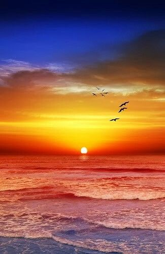 Sunset Beach,  Melbourne,  Victoria,  Australia