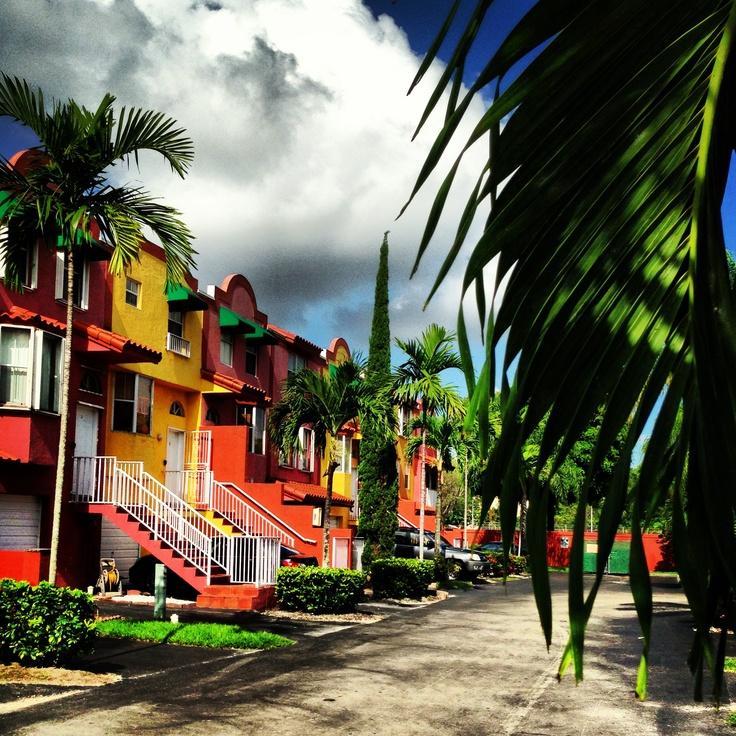 369 Best Miami, Florida Images On Pinterest