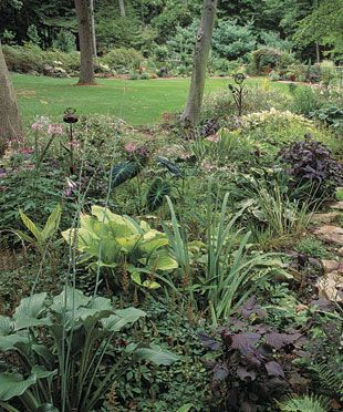 78 best images about drainage ditch ideas on pinterest for Wet garden designs