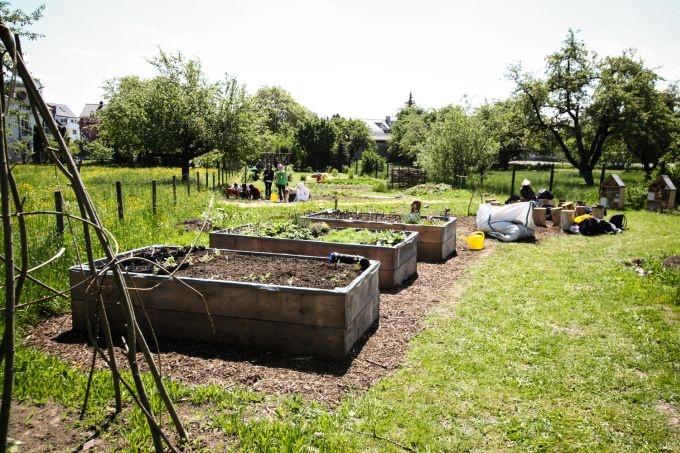 12 best landscape archi disabled person garden images for Garden design ideas for disabled