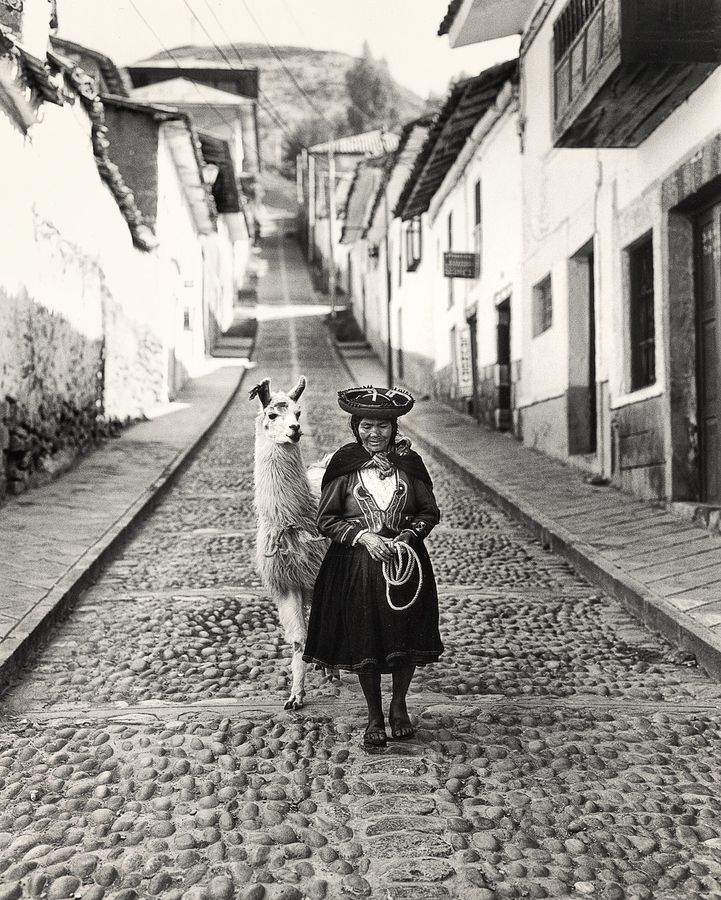 Cuzco - I would love to see an actual llama in Peru. Seeing one in Cuzco would be icing on the cake!  Seen it, took a picture of it!