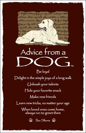 Spirit Totem Animals:  #Advice from a #Dog.