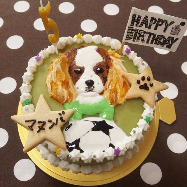 シンプルな似顔絵ケーキ🐾 お気に入りのサッカーボールと共に⚽✨ ちょっと渋めの色でかっこよさを意識しました😉🏄 #cavalierkingcharles#cavalierlove#cavalier#cake#dogcake#dogsweets#decorationcake#birthdaycake#バースデーケーキ#誕生日ケーキ#オーダーメイドケーキ#犬用ケーキ#デコレーションケーキ#犬#わんこ#愛犬#似顔絵ケーキ#キャバリア#キャバリア大好き#キャバリア部#キャバリアグッズ#キャバリアキングチャールズスパニエル