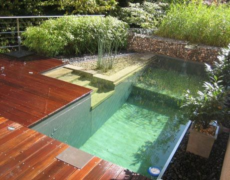 Natural swimming pools: Swim Ponds, Small Pools, Swimpool, Natural Swim Pools, Natural Home, Natural Pools, Woods Decks, Backyard Pools, Pools Design
