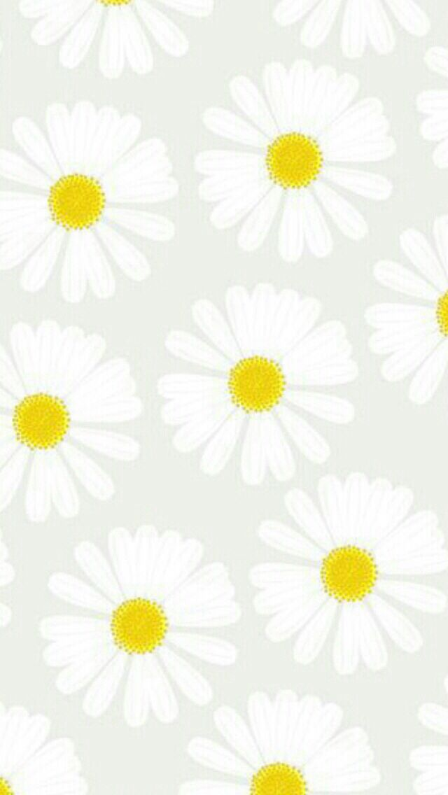 Daisy pattern wallpaper - photo#11