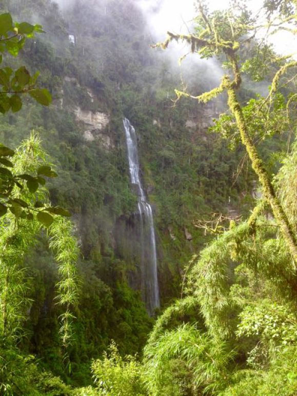 Advice for hiking in cloud forest & waterfalls (temp, what to bring, etc.)