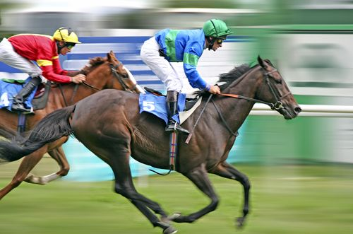 Horse Racing Results - Horse racing is an equestrian performance sport, typically involving two or more horses ridden by jockeys or driven over a set distance for competition.