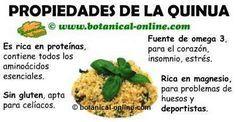 propiedades medicinales y beneficios de la quinoa o quinua para la salud