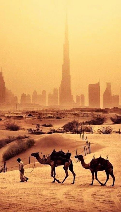 880 Best United Arab Emirates Images On Pinterest Middle
